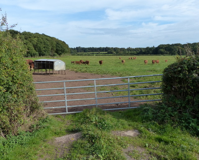 Gate leading onto farmland