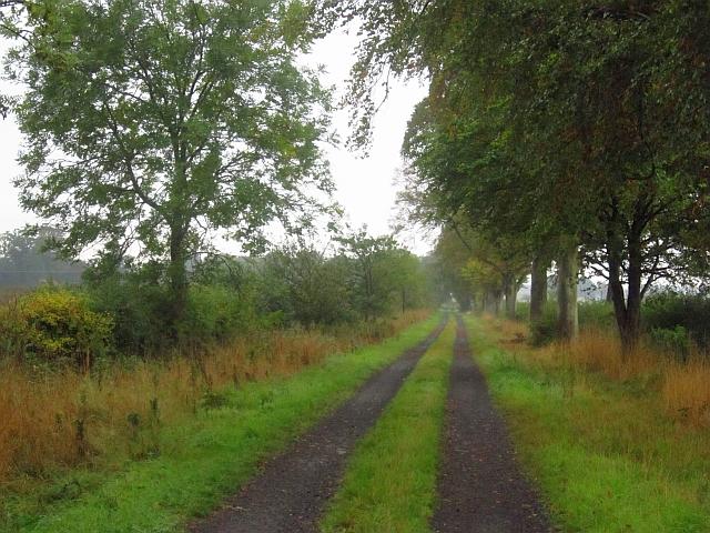 Road to Over Rankeilour