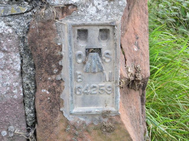 Ordnance Survey Flush Bracket G4259