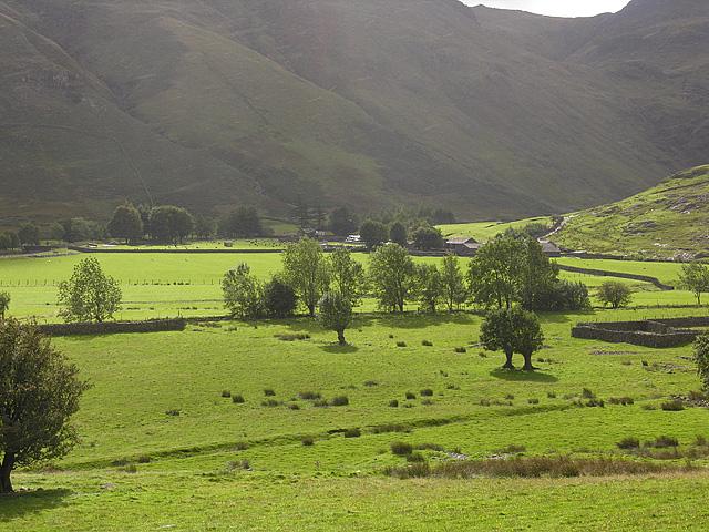 View towards Stool End farm