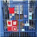 NS0864 : Yarn bombing, Rothesay : Week 40