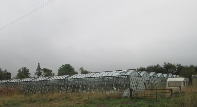 Glasshouses at Bonnet Knowe Nursery