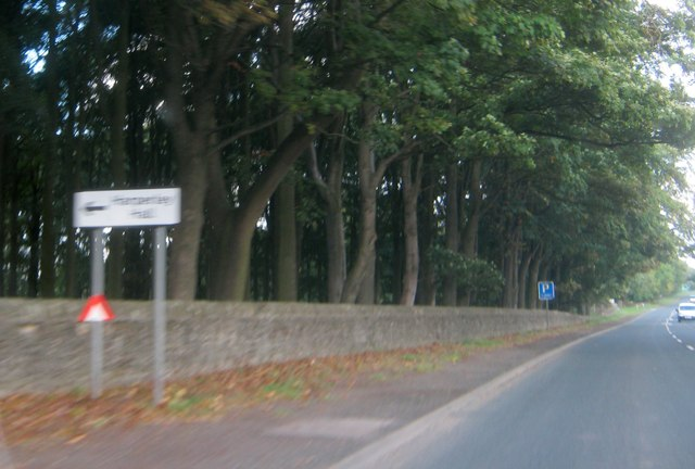 Park wall and tree belt alongside the A68