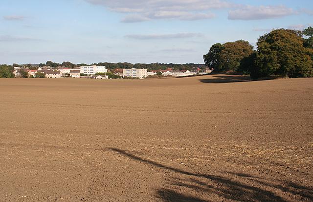 Fields near Glendevon