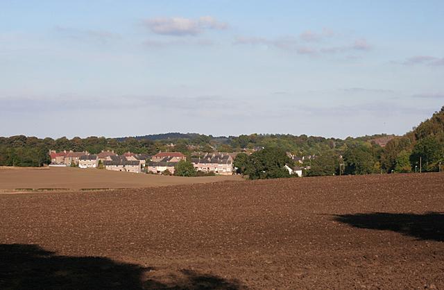 Fields near Faucheldean
