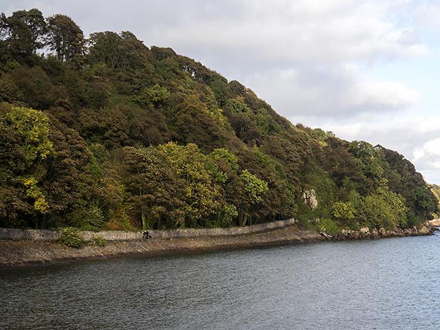 Fife coastal path near Hanging Craig