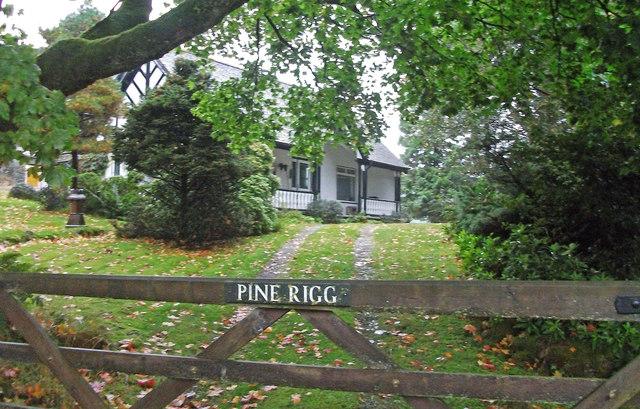 Pine Rigg