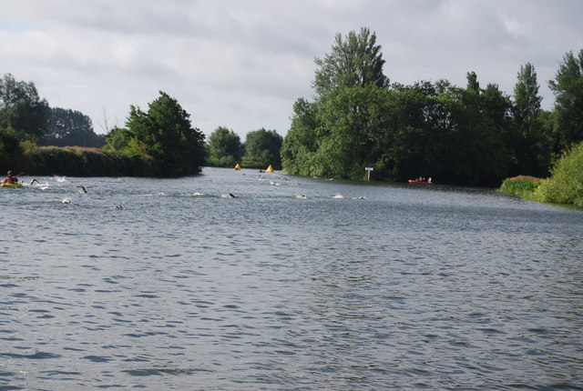 Swimmers in the Thames