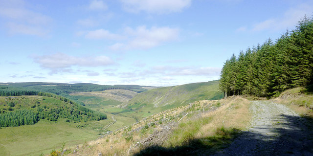 Forestry road and Cwm Tywi, Powys