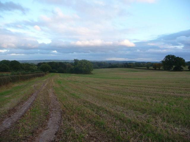 Big field near Richards Castle