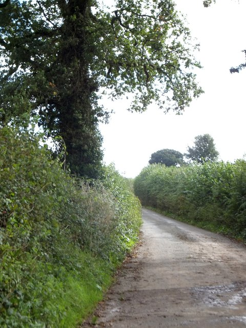 Minor road south of Blakewell Cross