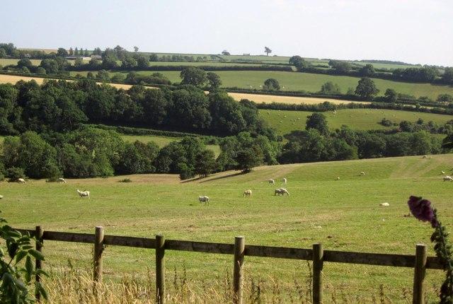 Little Dart valley