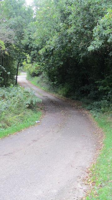 Track from Ashurst Bridge Road