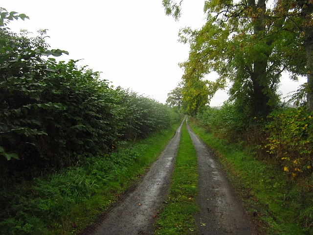 Road, Hilton to Beechbank