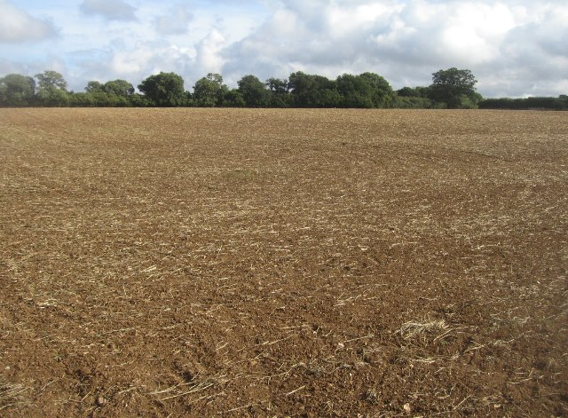 View across Hansfords Field (12 acres)