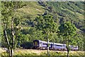NN3004 : Train south of Arrochar and Tarbet Station by Stuart Wilding