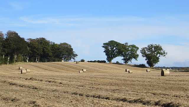 A half baled field