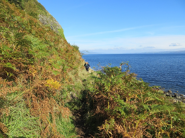Coast path, southern Bute