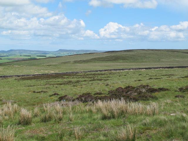Daw's Hill (2)