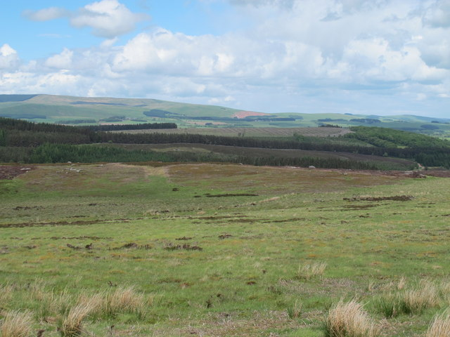 Daw's Moss north of Pedlar's Stone