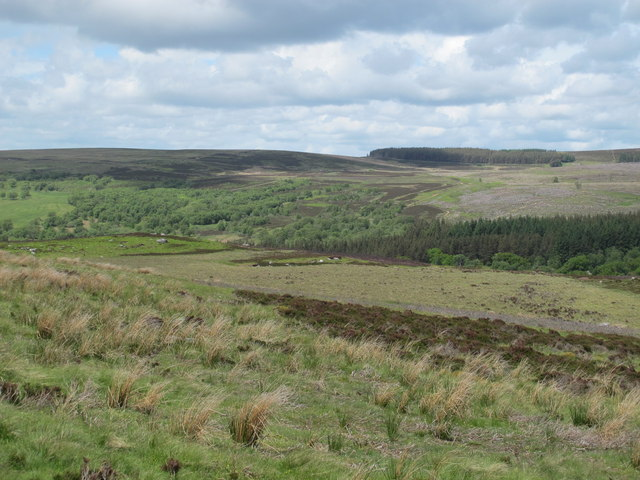 Moorland above the valley of Yardhope Burn