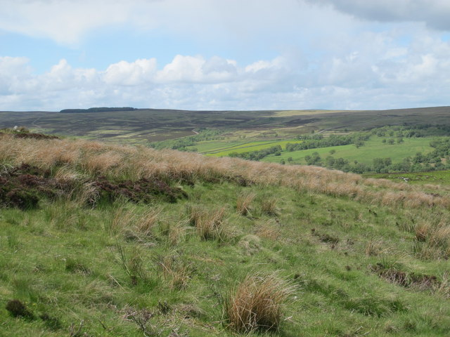 Moorland southwest of Black Hill
