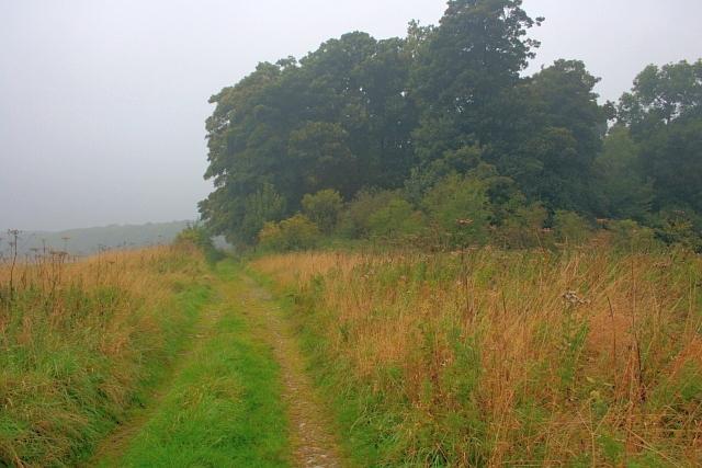 Public Bridleway near Hillhouse Plantation