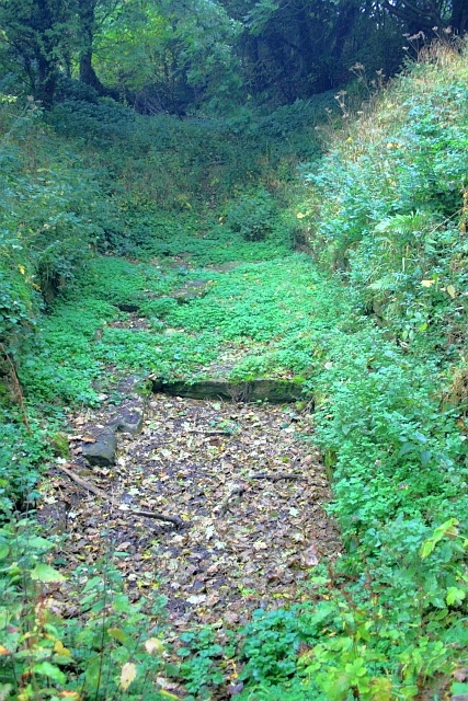 Stanwick Iron Age Fortifications