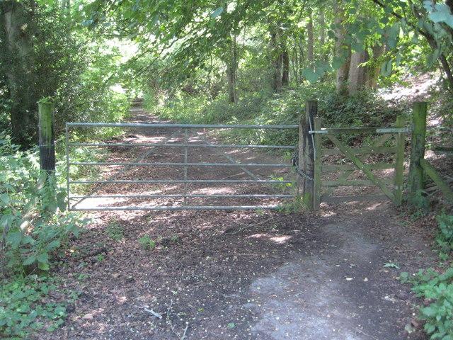 Shermanbury: Bridleway to Wineham