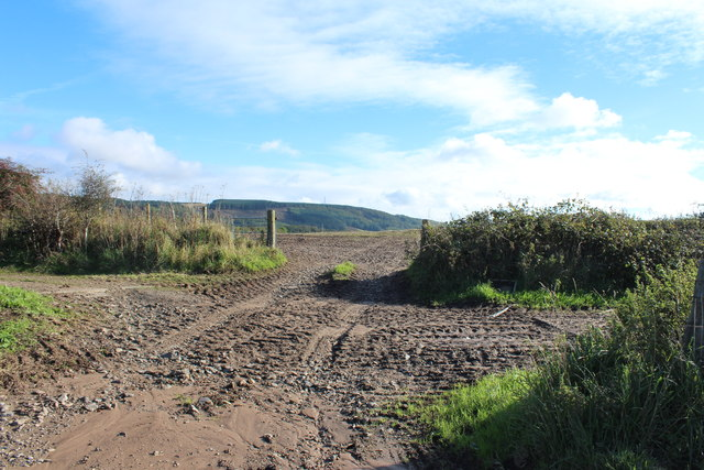 Track to Farmland near High Balyett