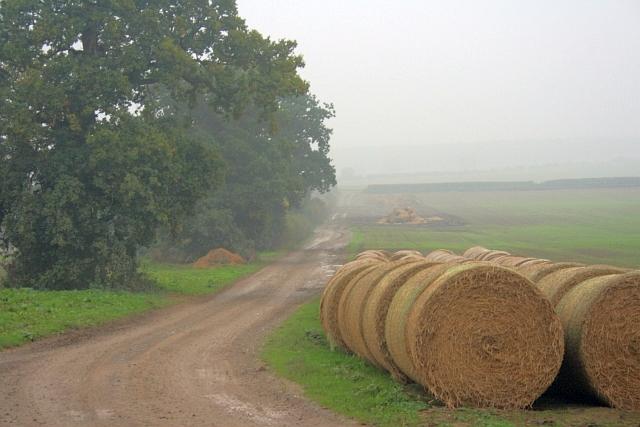 Farm Track near Park House