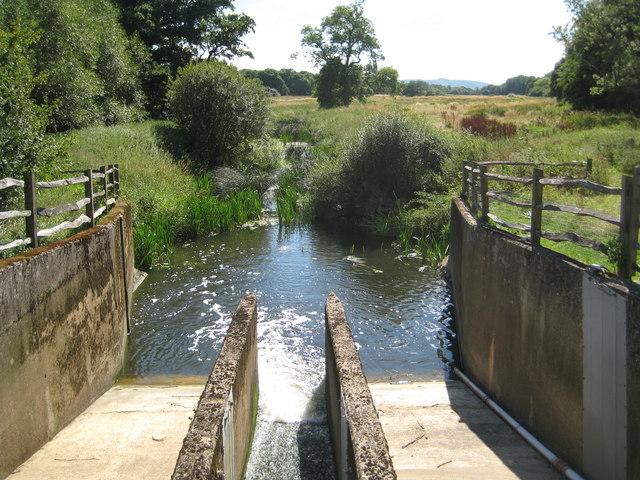 River Adur in Shermanbury