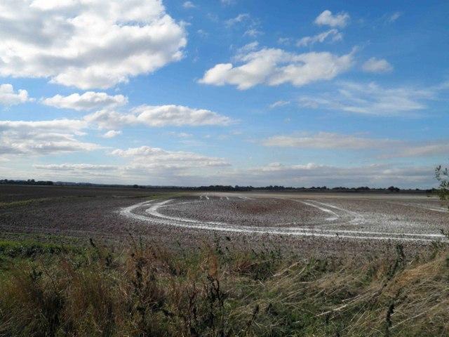 Limed Lincolnshire farmland