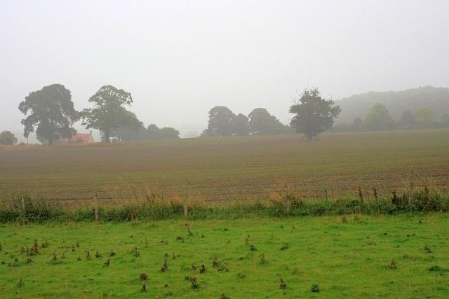 Field near Cliffe Bank