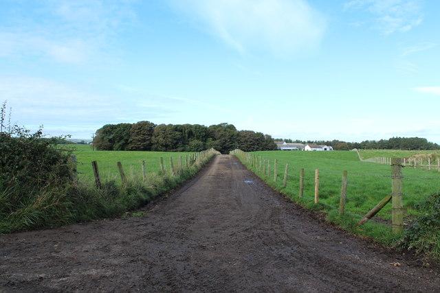 Road to Aird Farm