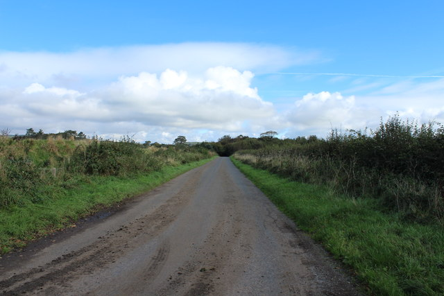 Road to the A75 near Pot Wood