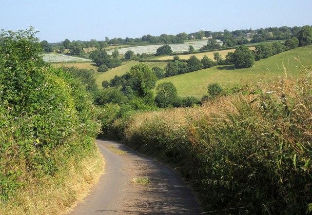 Lane to Witheridge