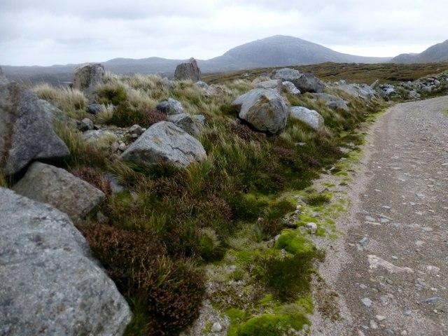 Rocks Beside Track