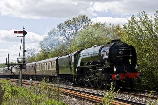 Steam special near Tram Inn