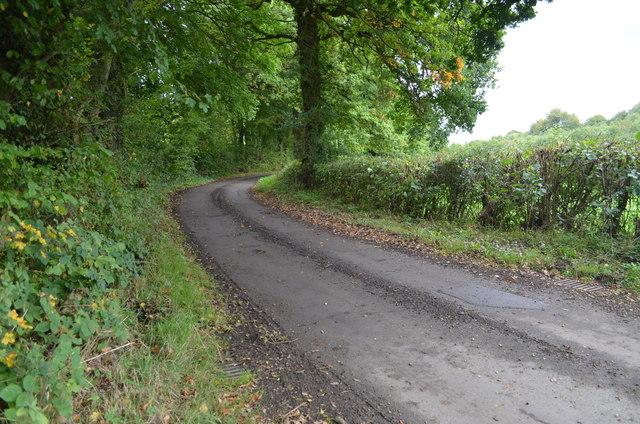 A bend in Partridges Lane