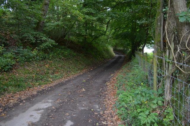 Partridges Lane along Long Shaw