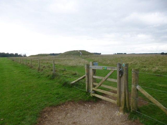 Stonehenge Down, gate
