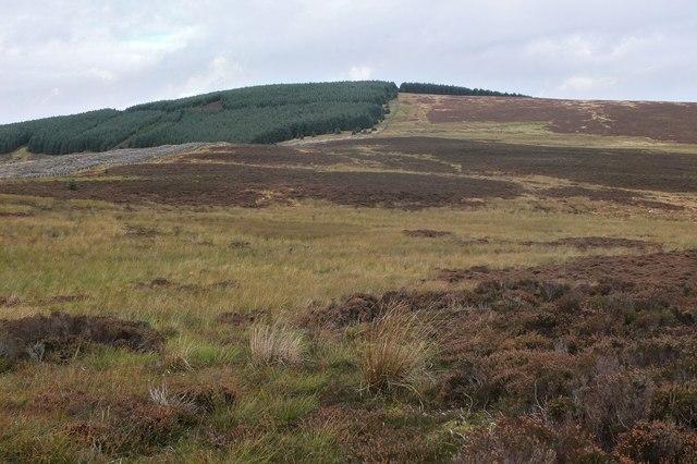 Boggy moorland below Far Hill