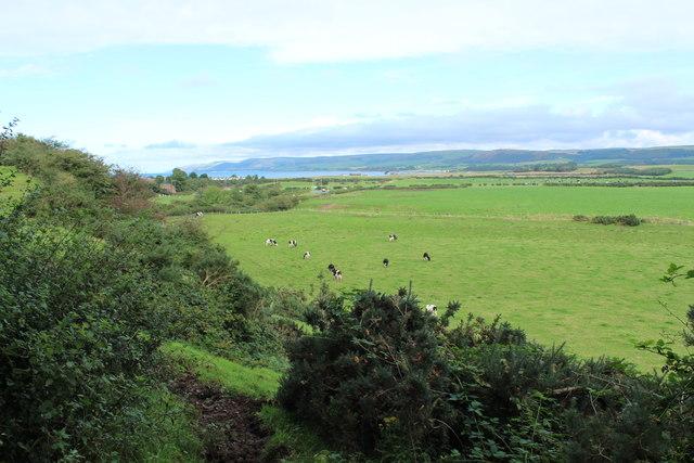 Farmland near Stranraer