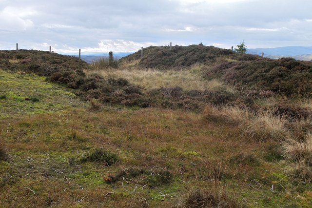 The north end of Wallace's Trench