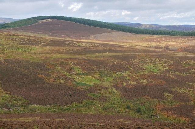 Across the moorland to Elibank Law