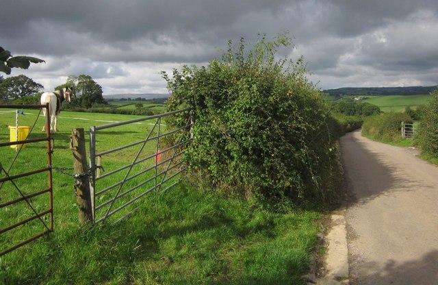 Pasture and Heathfield Road