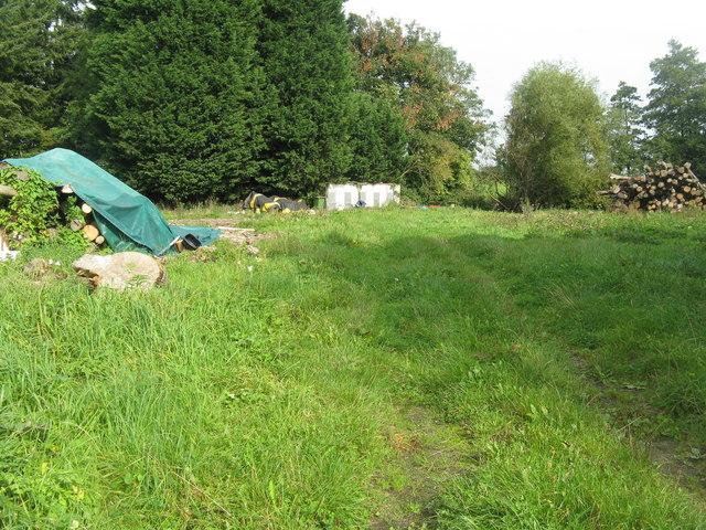 Log piles at Poulton Farm