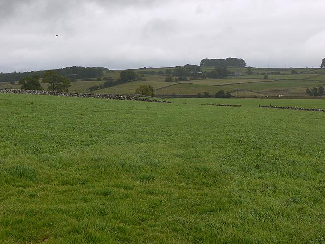 Fields near the West Coast main line