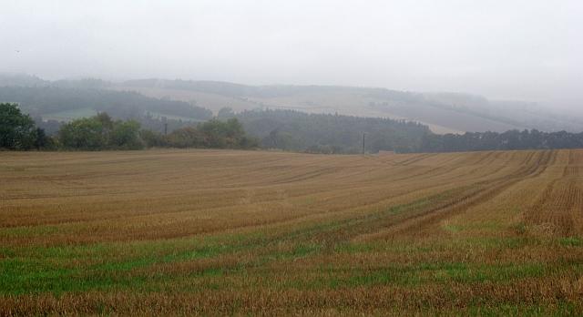 Stubble and rain, Rathillet